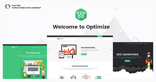 optimize paid wordpress theme by pouya eti